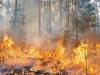 Incendi, bruciati 10 ettari di macchia mediterranea nel Ragusano