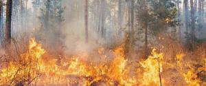 Incendi a nord di Siracusa: evacuate abitazioni e fiamme vicino l'autostrada