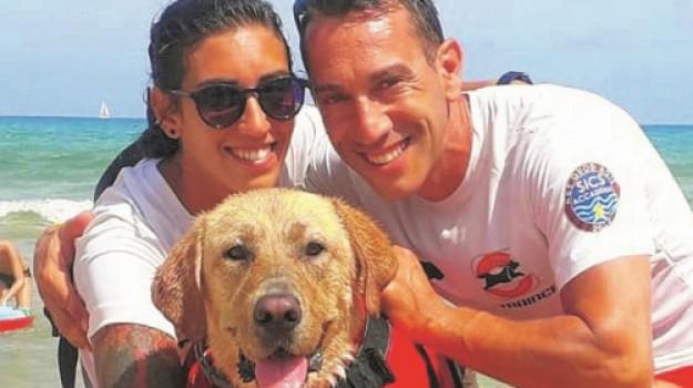 alcamo marina, cane, salvataggio in mare, Trapani, Cronaca