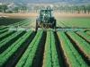 Inail: 65 milioni per salute e sicurezza in imprese agricole  (fonte: Pixabay)