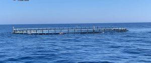 Motopesca traina una gabbia per tonni a Trapani, denunciato il comandante