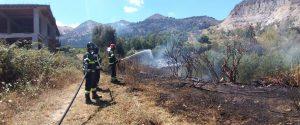 Incendi a Palermo: Bellolampo tra le fiamme, nube di fumo a Borgo Nuovo