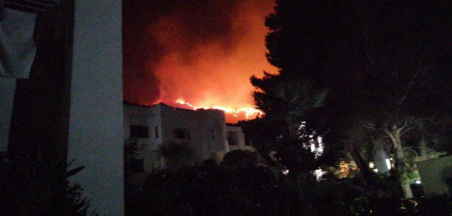 Vasto incendio nella notte a Calampiso, sulle colline di San Vito Lo Capo