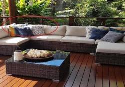 La famiglia australiana scopre un enorme serpente sulla veranda Riuscite a vederlo? Il grosso pitone è nascosto dietro ai cuscini del divano - CorriereTV