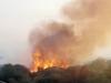 Brucia il Parco dell'Etna: roghi a Santa Maria di Licodia