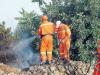 Caltanissetta, arrivano gli stipendi dei forestali: sospeso stato di agitazione