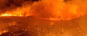 Incendio a Monreale - Foto di Marco Intravaia