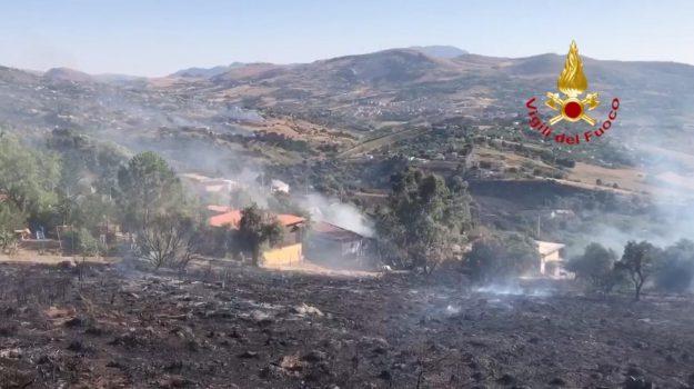 incendi, Monreale, partinico, Sicilia, Cronaca