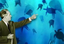 La plastica, il materiale che Dio non creòQuando Giulio Natta  cambiò il mondo  La storia del prodotto che sta inquinando i mari attraverso il suo inventore premio Nobel - Corriere Tv
