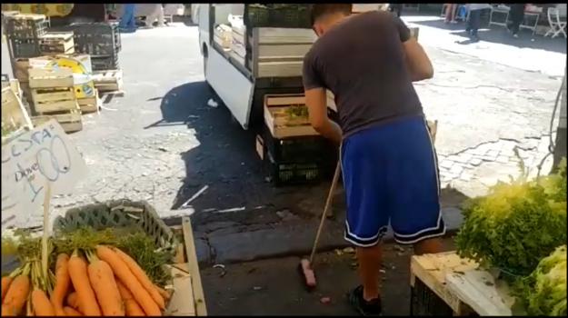 rifiuti, Catania, Economia