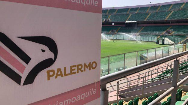 coronavirus, palermo calcio, Palermo, Calcio