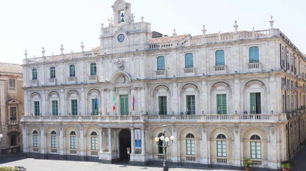 università, Catania, Enna, Cultura