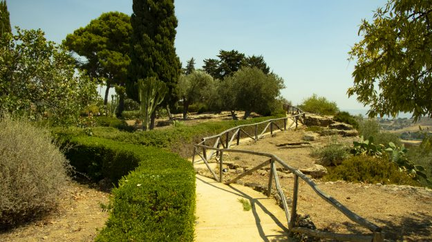 siti archeologici, Sir Alexander Hardcastle, Agrigento, Cultura