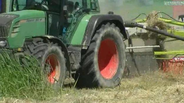 AGRICOLTURA, Oscar Green 2019, Catania, Economia