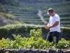 """Ambiente, Pantelleria come """"isola laboratorio"""" all'insegna della green economy"""