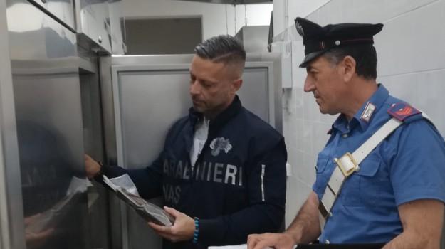 carabinieri, san vito lo capo, tonno, Trapani, Cronaca