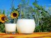 Latte, in Piemonte nuovo prodotto più digeribile (fonte: Pixabay)