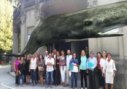 Il capodoglio (virtuale) sul cielo di Milano: al via «Digital Whales» Riflettori puntati per un anno sui grandi mammiferi marini: la mostra all'Acquario Civico  - Corriere Tv