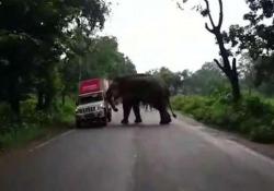 Il furgoncino accosta per far passare l'elefante: l'animale lo attacca e lo ribalta Il video girato su una strada nello stato indiano del Bengala - CorriereTV