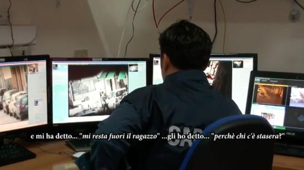 mafia, MOVIDA, Palermo, Cronaca