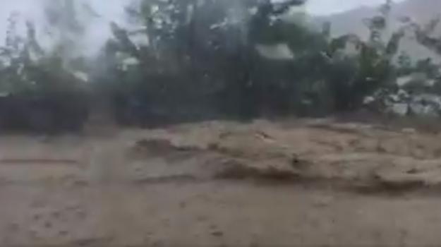 Maltempo, pioggia, Palermo, Cronaca