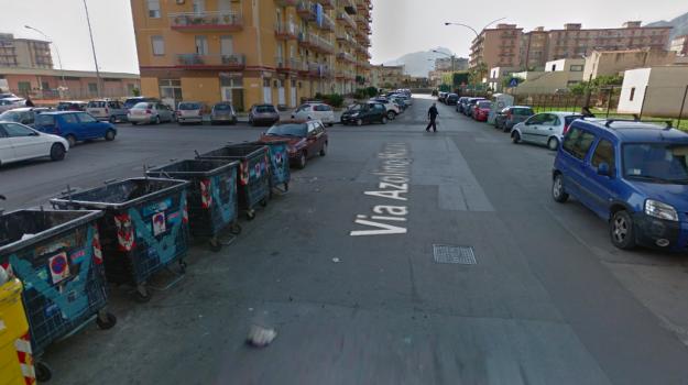 brancaccio, pitbull, Palermo, Cronaca