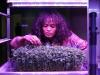 Menu in 3D e aroma-box, a Cibus Tec 500 innovazioni green