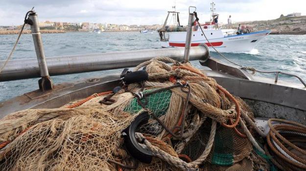 pesca, Trapani, Economia