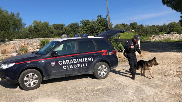 carabinieri, droga, furti, Ragusa, Cronaca