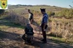 Reti e trappole per catturare cardellini nella piana di Gela, denunciato un bracconiere