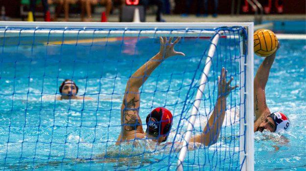 pallanuoto, telimar, Palermo, Sport