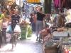 Palermo, volatili di specie protetta venduti a Ballarò: scattano denuncia e sequestro