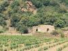 Pantelleria, adesso si punta anche sul turismo scolastico