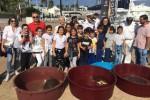Capo d'Orlando, liberate quattro tartarughe di Caretta caretta