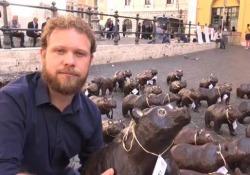 WWF porta 50 orsi marsicani a Montecitorio: «Chiediamo fondi per salvaguardarli» Le dichiarazioni del responsabile dell'associazione ambientalista durante il sit-in pacifico a Roma - Ansa