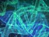 Una banca dati riunisce tutti i tratti genetici caratteristici di un organismo in buona salute (fonte: PIxabay)