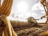 Marchi agricoli Cnh si aggiudicano Machine of the Year