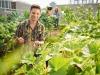 Bandiera Verde, premiati i 16 assi della nuova agricoltura