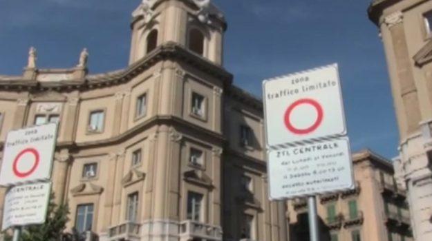 ztl, Stefania Munafò, Palermo, Politica