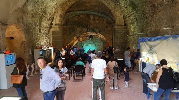 musei, Messina, Economia
