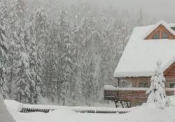 Oltre mezzo metro di neve. Caos e disagi in Alto Adige Numerose strade sono bloccate per gli alberi caduti: più di 300 gli interventi dei vigili del fuoco - CorriereTV