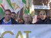 Palermo, la protesta degli ex Lsu: