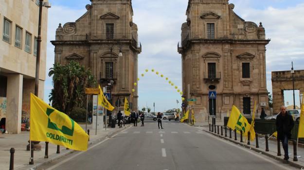 AGRICOLTURA, protesta, Palermo, Cronaca
