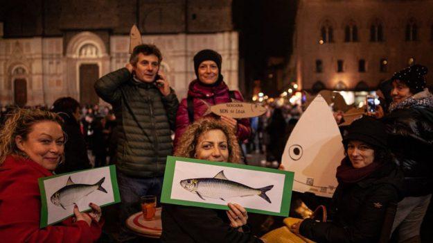 sardine, università, Palermo, Politica