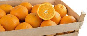 Torna la Sagra delle arance di Ribera DOP: degustazioni a Piazza Duomo