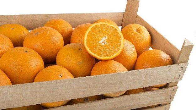 enogastronomia, Agrigento, Mangiare e bere