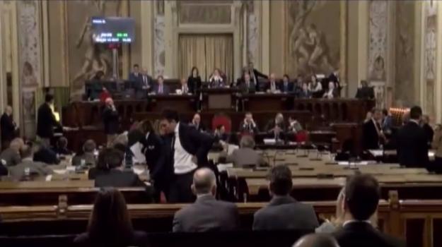 rifiuti, Roberta Schillaci, Palermo, Politica