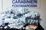 Catania, trovato un chilo e mezzo di marijuana nel vano ascensore del condominio