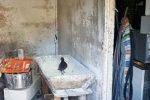 Abusi edilizi, carenza di igiene, evasione maltrattamenti: 15 indagati a Catania
