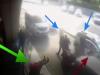 Chiede l'uso del tassametro, tassista gli dà un pugno in faccia: il video